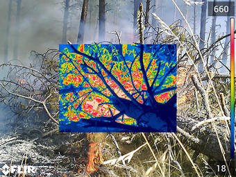 The USGS Rolls out a new five year wildland fire science strategy to address increasingly devastating fires