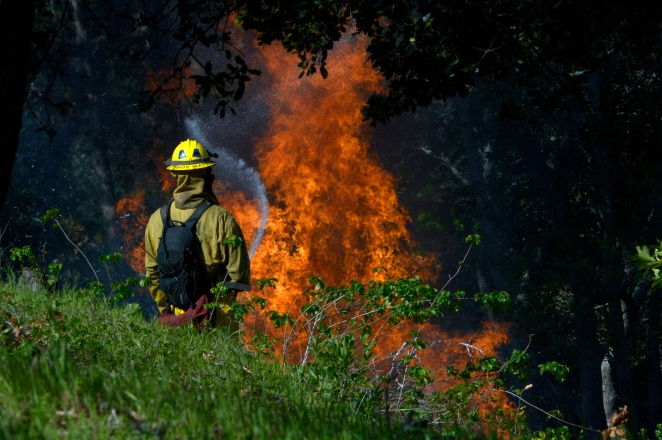 Marin Voice:  Insurance officials embrace strategies to protect against wildfires