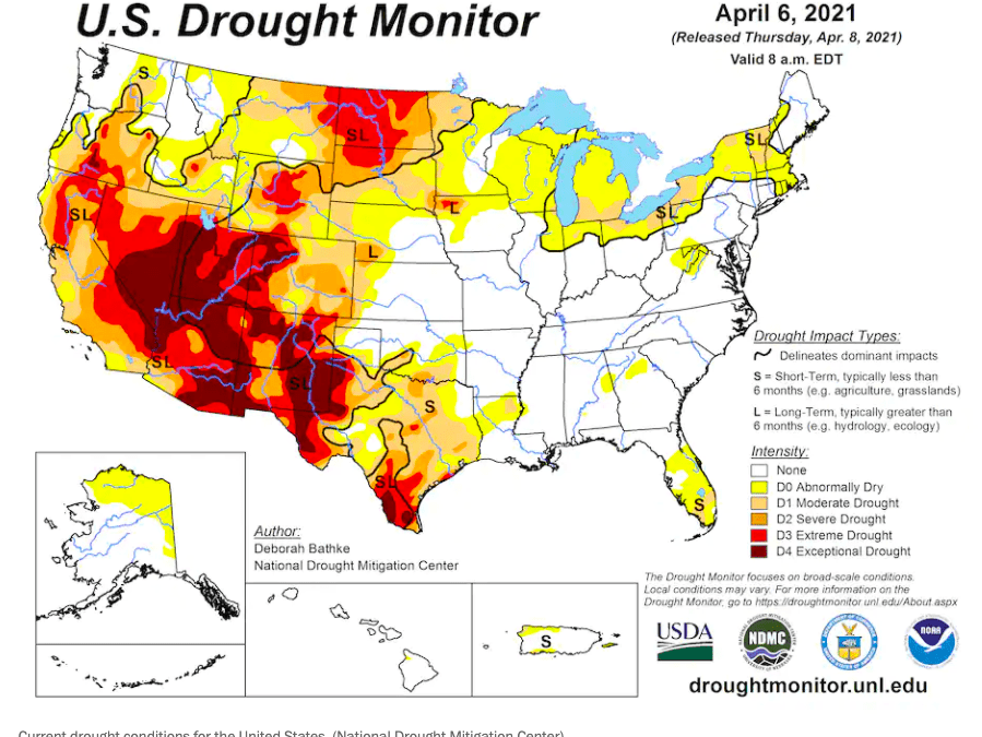 Drought-plagued California and the western U.S. may see another devastating wildfire season