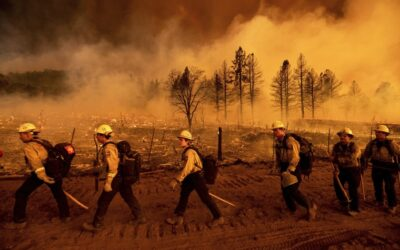 Thousands of firefighters battle wildfires burning more than 850,000 acres across 12 states
