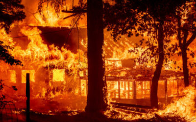 Dixie Fire torches homes, intensifies as blazes batter U.S. West